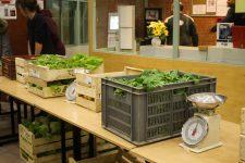 Une Amap étudiante pour sensibiliser aux questions de santé et d'environnement