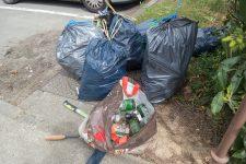 Les Marcheurs cueilleurs ou les pros de la chasse aux déchets débarquent à Coignières