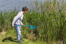 Le centre socioculturel Jacques Miquel à la recherche des animaux de l'étang