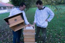 Un projet de sauvegarde de l'abeille locale au CEFP
