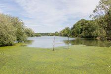 Un retour presque à la normale pour l'étang de l'Île de loisirs