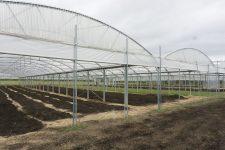 Une ferme-école va voir le jour à la ferme de Buloyer