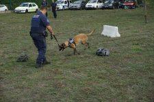 Un centre de formation pour les brigades canines devrait bientôt voir le jour