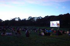 Un été de cinéma sous les étoiles dans l'agglomération